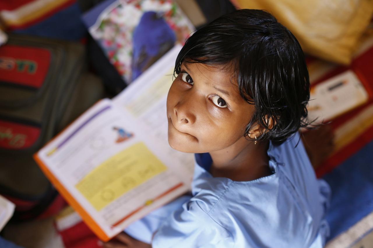 cuantos idiomas nacionales hay reconocidos en la india