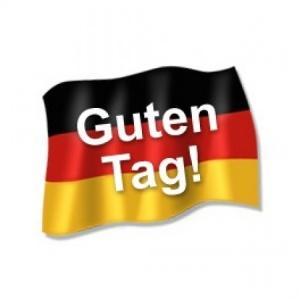 German to English translator