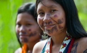 palabras que provengan de lenguas indigenas de las americas